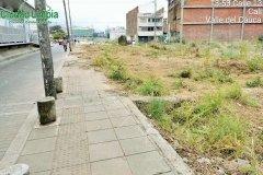 Jornada-de-limpieza-Ciudad-limpia_04